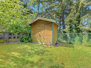 Photo 18: 4160 Borden St in VICTORIA: SE Lake Hill Half Duplex for sale (Saanich East)  : MLS®# 786805
