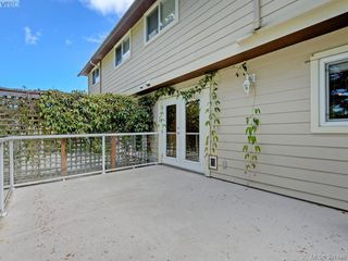 Photo 16: 4160 Borden St in VICTORIA: SE Lake Hill Half Duplex for sale (Saanich East)  : MLS®# 786805