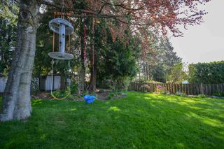 Photo 16: 165 MONTGOMERY Street in Coquitlam: Cape Horn House for sale : MLS®# R2280365