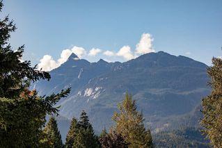 Photo 3: 40746 THUNDERBIRD Ridge in Squamish: Garibaldi Highlands House for sale : MLS®# R2308871