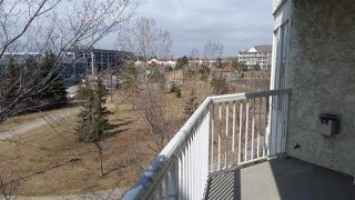 Photo 17: 308 5212 25 Avenue in Edmonton: Zone 29 Condo for sale : MLS®# E4141556