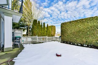 Photo 19: 8 9559 130A Street in Surrey: Queen Mary Park Surrey Townhouse for sale : MLS®# R2340857