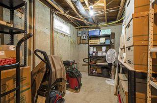 Photo 25: 5531 113 Street in Edmonton: Zone 15 House for sale : MLS®# E4149156