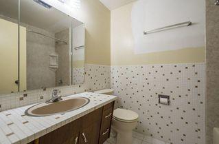 Photo 16: 5531 113 Street in Edmonton: Zone 15 House for sale : MLS®# E4149156
