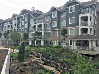 """Photo 16: 308 16388 64 Avenue in Surrey: Cloverdale BC Condo for sale in """"The Ridge at Bose Farms"""" (Cloverdale)  : MLS®# R2369119"""