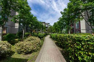 "Photo 20: 110 15385 101A Avenue in Surrey: Guildford Condo for sale in ""Charlton Park"" (North Surrey)  : MLS®# R2369831"