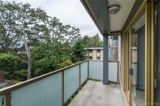 Photo 20: 402 1025 Inverness Rd in VICTORIA: SE Quadra Condo Apartment for sale (Saanich East)  : MLS®# 815890