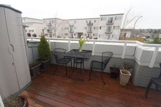 Photo 13: 16 1203 MADISON Ave in Madison Gardens: Home for sale : MLS®# V807484