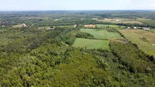 Photo 2: West Branch Road in Welsford: 108-Rural Pictou County Vacant Land for sale (Northern Region)  : MLS®# 202013159