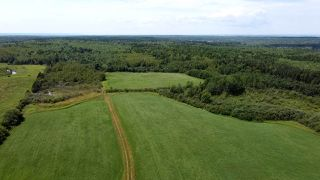 Photo 3: West Branch Road in Welsford: 108-Rural Pictou County Vacant Land for sale (Northern Region)  : MLS®# 202013159