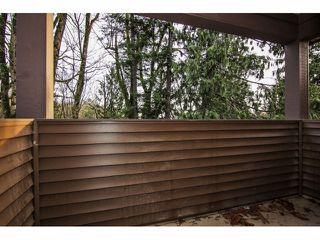 "Photo 12: 2352 MERLOT Boulevard in Abbotsford: Aberdeen House for sale in ""Pepin Brook Estates"" : MLS®# F1326399"
