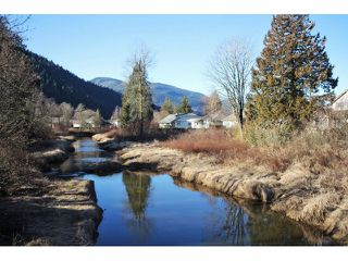 Photo 17: 462 NAISMITH Avenue: Harrison Hot Springs House for sale : MLS®# H1400361