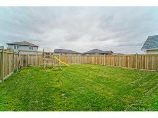 Photo 16: 81 Cobblestone Court in NIVERVILLE: Glenlea / Ste. Agathe / St. Adolphe / Grande Pointe / Ile des Chenes / Vermette / Niverville Residential for sale (Winnipeg area)  : MLS®# 1424479
