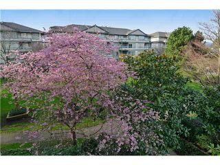 "Photo 1: 309 3455 ASCOT Place in Vancouver: Collingwood VE Condo for sale in ""QUEEN'S COURT"" (Vancouver East)  : MLS®# V1105567"