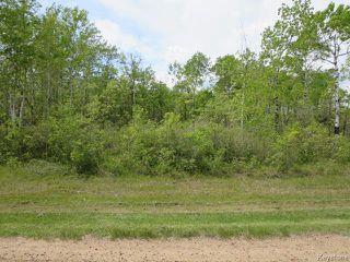 Photo 2: 0 Therrien Drive in RICHER: Ste. Anne / Richer Residential for sale (Winnipeg area)  : MLS®# 1523449