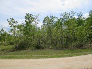 Photo 1: 0 Therrien Drive in RICHER: Ste. Anne / Richer Residential for sale (Winnipeg area)  : MLS®# 1523449