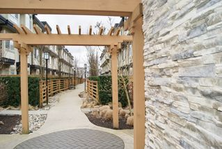 """Photo 20: 30 19477 72A Avenue in Surrey: Clayton Townhouse for sale in """"SUN at 72"""" (Cloverdale)  : MLS®# R2150537"""