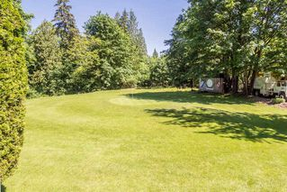 "Photo 14: 12309 240 Street in Maple Ridge: East Central House for sale in ""HACKERS HAVEN Golf Course"" : MLS®# R2172425"