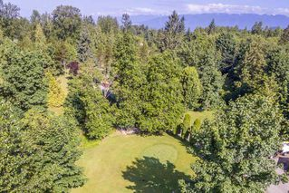 "Photo 4: 12309 240 Street in Maple Ridge: East Central House for sale in ""HACKERS HAVEN Golf Course"" : MLS®# R2172425"