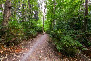 "Photo 20: 207 3205 MOUNTAIN Highway in North Vancouver: Lynn Valley Condo for sale in ""MILL HOUSE"" : MLS®# R2204243"