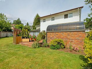 Photo 20: 4275 Baylis Pl in VICTORIA: SE Gordon Head House for sale (Saanich East)  : MLS®# 788741