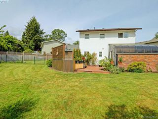 Photo 19: 4275 Baylis Pl in VICTORIA: SE Gordon Head House for sale (Saanich East)  : MLS®# 788741