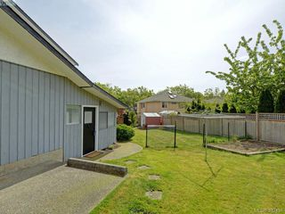 Photo 18: 4275 Baylis Pl in VICTORIA: SE Gordon Head House for sale (Saanich East)  : MLS®# 788741