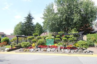 """Photo 11: 6182 W GREENSIDE Drive in Surrey: Cloverdale BC Townhouse for sale in """"Greenside Estates"""" (Cloverdale)  : MLS®# R2290183"""