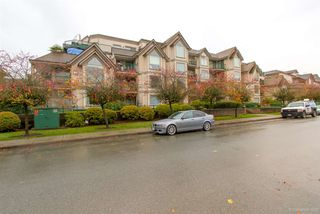 Photo 18: 212 1650 GRANT Avenue in Port Coquitlam: Glenwood PQ Condo for sale : MLS®# R2319533