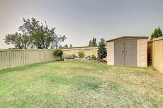 Photo 40: 59 TARINGTON Close NE in Calgary: Taradale Detached for sale : MLS®# C4216130