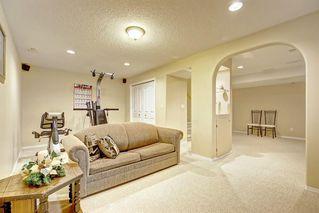 Photo 34: 59 TARINGTON Close NE in Calgary: Taradale Detached for sale : MLS®# C4216130