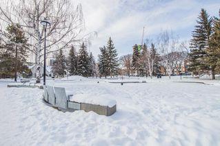 Photo 21: 208 12028 103 Avenue in Edmonton: Zone 12 Condo for sale : MLS®# E4144749