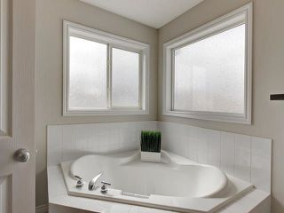 Photo 19: 20127 48 Avenue in Edmonton: Zone 58 House for sale : MLS®# E4152463