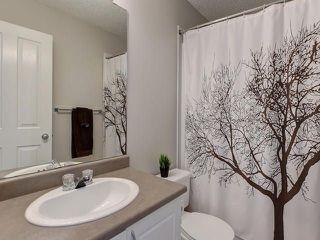 Photo 21: 20127 48 Avenue in Edmonton: Zone 58 House for sale : MLS®# E4152463