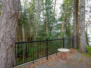 Photo 28: 4651 Maple Guard Dr in BOWSER: PQ Bowser/Deep Bay Single Family Detached for sale (Parksville/Qualicum)  : MLS®# 811715