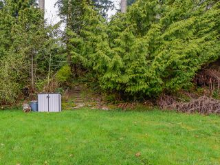 Photo 14: 4651 Maple Guard Dr in BOWSER: PQ Bowser/Deep Bay Single Family Detached for sale (Parksville/Qualicum)  : MLS®# 811715