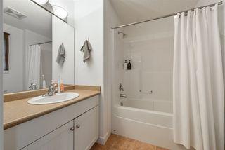 Photo 28: 3816 ALLAN Drive in Edmonton: Zone 56 Attached Home for sale : MLS®# E4157145