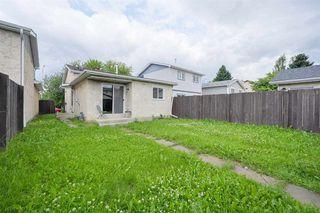 Photo 15: 3617 42A Avenue in Edmonton: Zone 29 House for sale : MLS®# E4164431