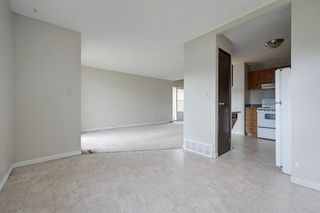 Photo 5: 3617 42A Avenue in Edmonton: Zone 29 House for sale : MLS®# E4164431