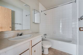 Photo 12: 3617 42A Avenue in Edmonton: Zone 29 House for sale : MLS®# E4164431