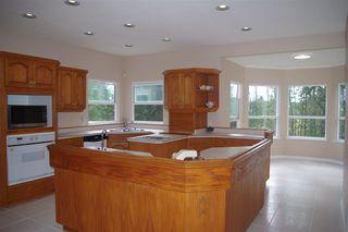 Photo 10: 23679 TAMARACK Lane in Maple Ridge: Albion House for sale : MLS®# R2392308
