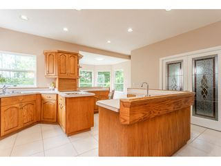 Photo 9: 23679 TAMARACK Lane in Maple Ridge: Albion House for sale : MLS®# R2392308