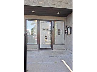 Photo 3: 302 333 5 Avenue NE in Calgary: Crescent Heights Condo for sale : MLS®# C4024075