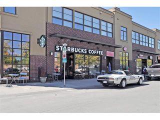 Photo 31: 302 333 5 Avenue NE in Calgary: Crescent Heights Condo for sale : MLS®# C4024075