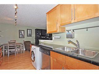 Photo 11: 302 333 5 Avenue NE in Calgary: Crescent Heights Condo for sale : MLS®# C4024075