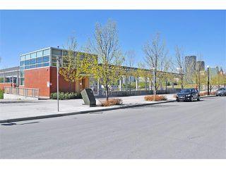 Photo 25: 302 333 5 Avenue NE in Calgary: Crescent Heights Condo for sale : MLS®# C4024075