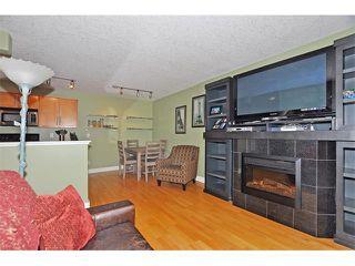 Photo 5: 302 333 5 Avenue NE in Calgary: Crescent Heights Condo for sale : MLS®# C4024075