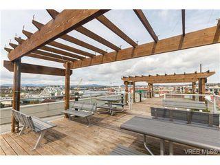 Photo 13: 207 524 Yates St in VICTORIA: Vi Downtown Condo for sale (Victoria)  : MLS®# 711722