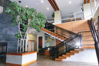 """Photo 13: 502 7478 BYRNEPARK Walk in Burnaby: South Slope Condo for sale in """"GREEN"""" (Burnaby South)  : MLS®# R2021457"""