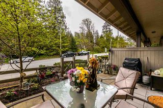 """Photo 19: 13 20326 68 Avenue in Langley: Willoughby Heights Townhouse for sale in """"Sunpointe"""" : MLS®# R2160088"""